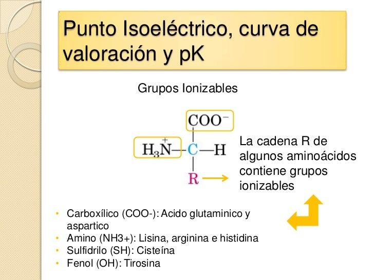 Punto Isoeléctrico, curva de valoración y pK                 Grupos Ionizables                                       La ca...