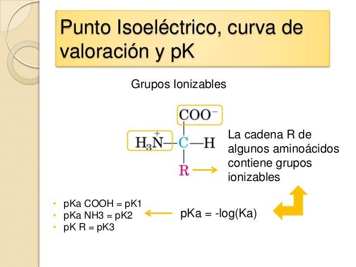 Punto Isoeléctrico, curva de valoración y pK             Grupos Ionizables                                 La cadena R de ...