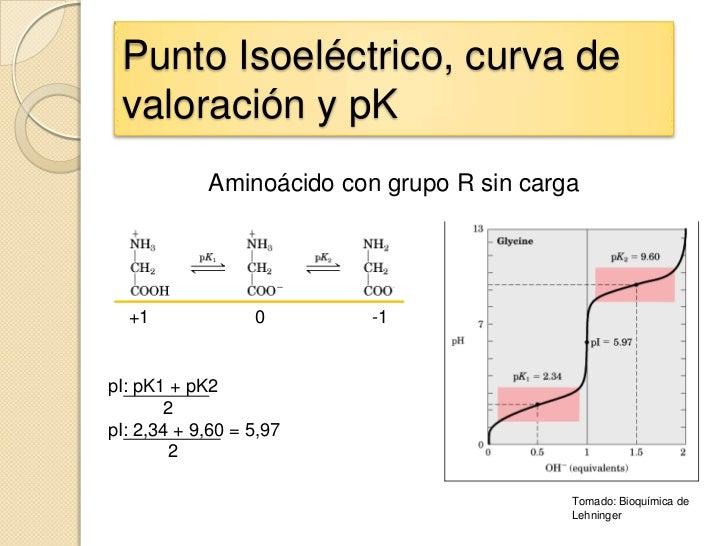 Punto Isoeléctrico, curva de valoración y pK            Aminoácido con grupo R sin carga  +1              0       -1pI: pK...