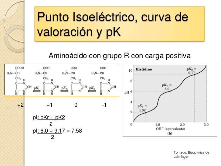 Punto Isoeléctrico, curva de      valoración y pK           Aminoácido con grupo R con carga positiva+2        +1         ...