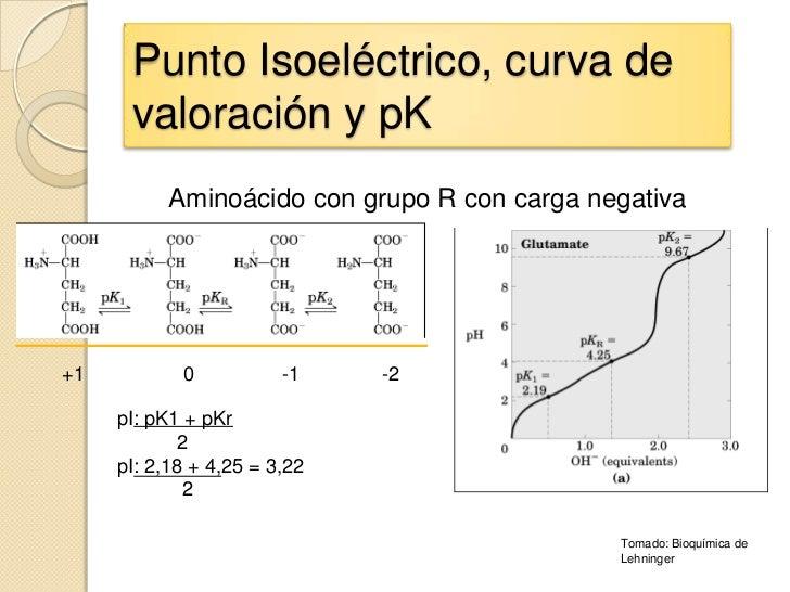 Punto Isoeléctrico, curva de      valoración y pK           Aminoácido con grupo R con carga negativa+1          0        ...