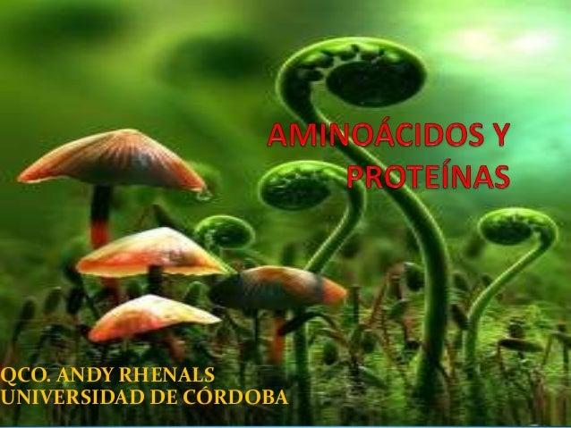 QCO. ANDY RHENALS UNIVERSIDAD DE CÓRDOBA