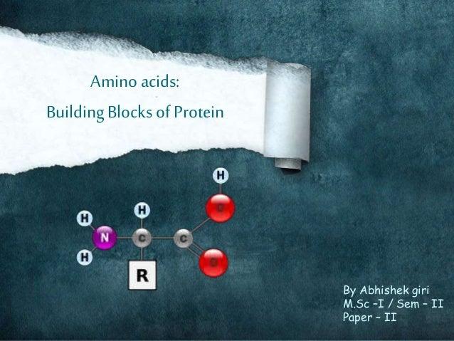 Protein Building Blocks The A Amino Acids