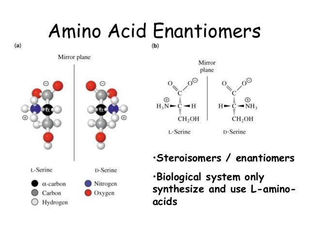 amino acids and peptides ps Most antimicrobial peptides contain less than 100 amino acid residues,  (ps), whereas mammalian  amino acid peptides differing in two amino acids.