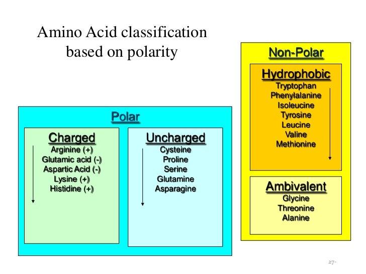 Amino acid types by Mohammadali Kharodiya