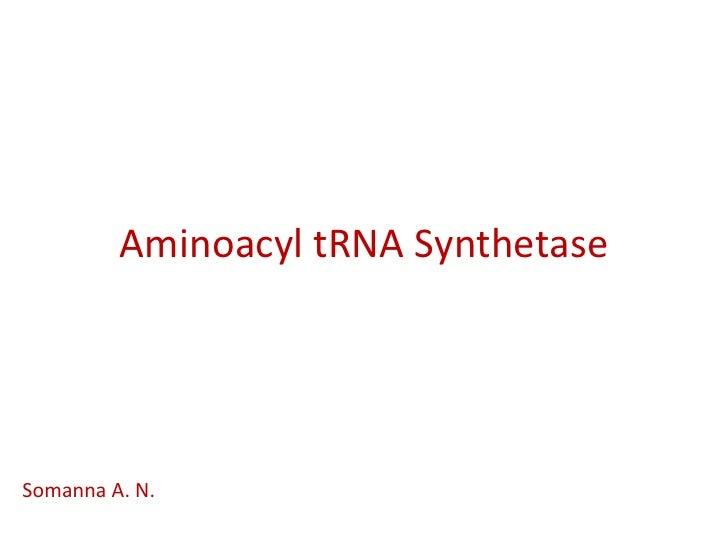 Aminoacyl tRNA SynthetaseSomanna A. N.