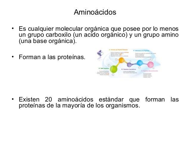 Aminoácidos • Es cualquier molecular orgánica que posee por lo menos un grupo carboxilo (un acido orgánico) y un grupo ami...