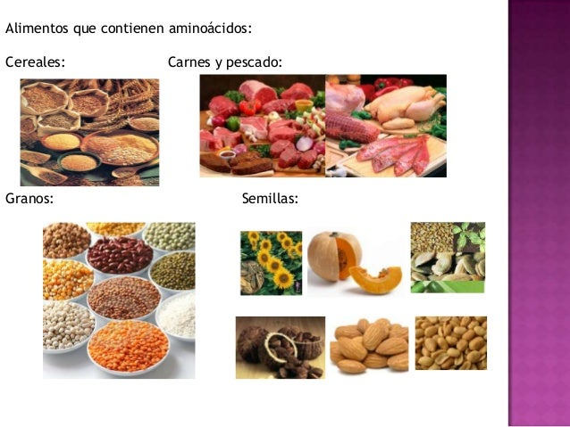 Amino cidos - Alimentos q contengan magnesio ...