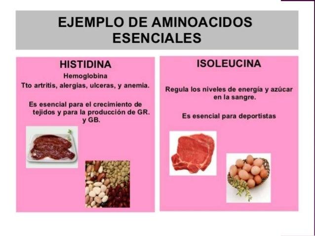 Aminoácidos nuevo