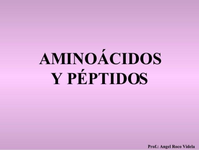 Aminoácidos Y Peptidos