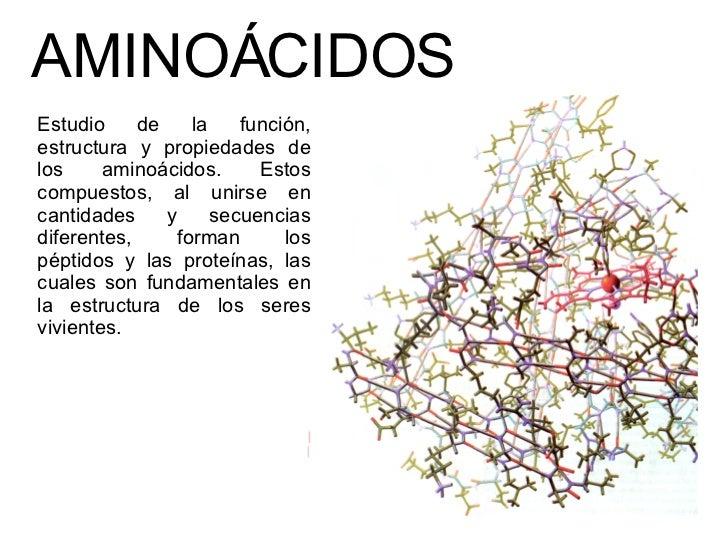 AMINOÁCIDOS  Estudio de la función, estructura y propiedades de los aminoácidos. Estos compuestos, al unirse en cantidades...
