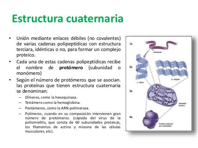 Aminoácidos Y Proteínas 2015