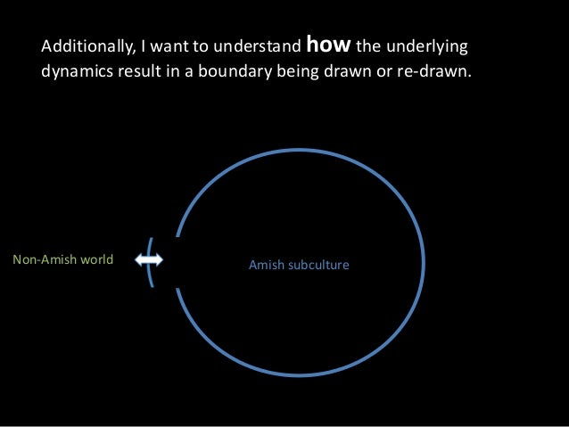 what s in a boundary exploring the subcultural dynamics that protect  non amish world amish subculture 18