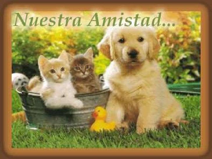 Amistad1