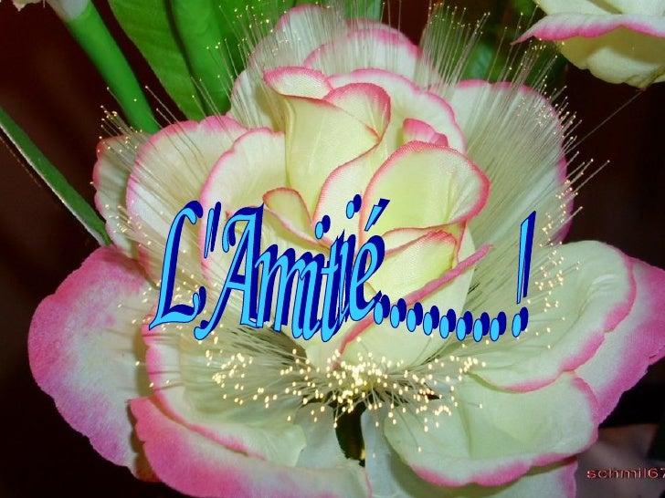 L'Amitié........!