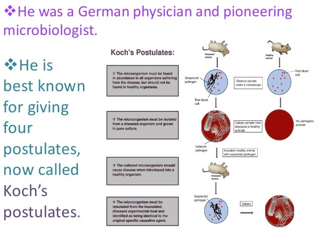 contribution of robert koch in microbiology pdf