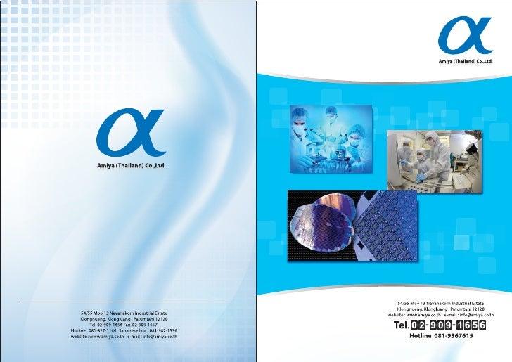 Amiya catalogs