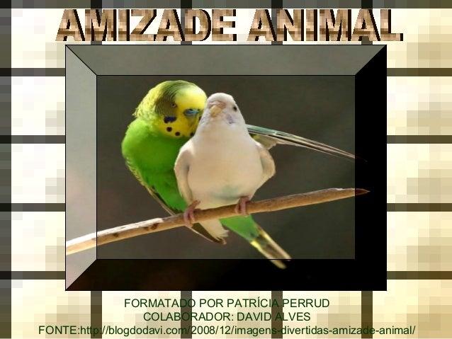 FORMATADO POR PATRÍCIA PERRUD COLABORADOR: DAVID ALVES FONTE:http://blogdodavi.com/2008/12/imagens-divertidas-amizade-anim...