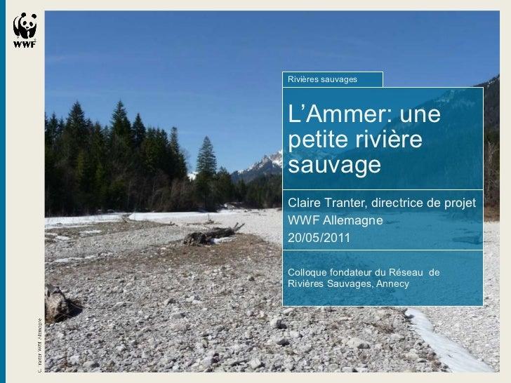 <ul><li>Rivières sauvages </li></ul><ul><li>L'Ammer: une petite rivière sauvage </li></ul><ul><li>Claire Tranter, directri...