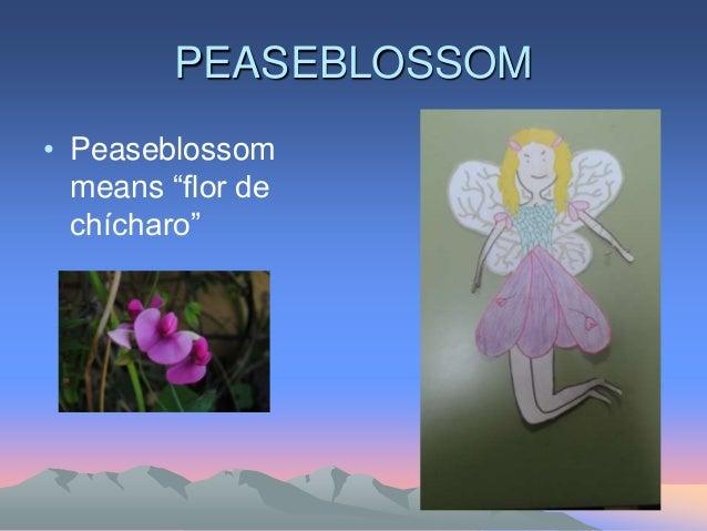 """PEASEBLOSSOM • Peaseblossom means """"flor de chícharo"""""""