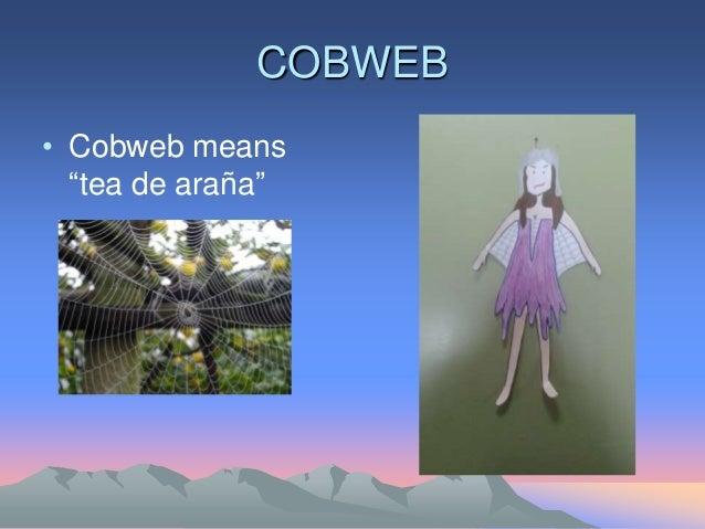 "COBWEB • Cobweb means ""tea de araña"""