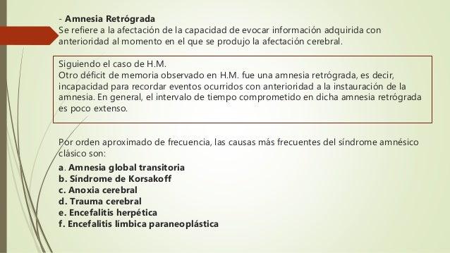 Amnesias Neuropsicologia Psicofisiologia