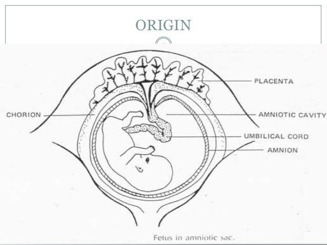 amniotic fluid disorders