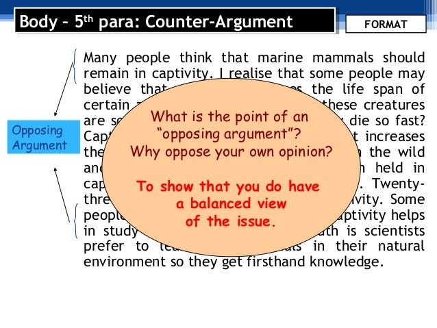 model argumentative essay marine parks Model argumentative essay the issue covered by the essay is should marine mammals be kept in captivity in marine parksthis essay can be a model for your own.