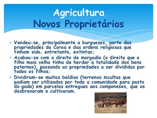 Agricultura Novos Proprietários Vendeu-se, principalmente a burgueses, parte das propriedades da Coroa e das ordens religi...
