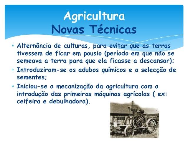 Agricultura Novas Técnicas Alternância de culturas, para evitar que as terras tivessem de ficar em pousio (período em que ...