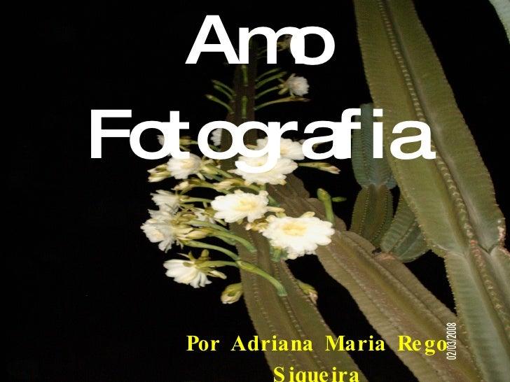 Amo Fotografia Por Adriana Maria Rego Siqueira