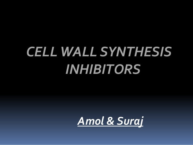 CELLWALL SYNTHESIS INHIBITORS Amol & Suraj