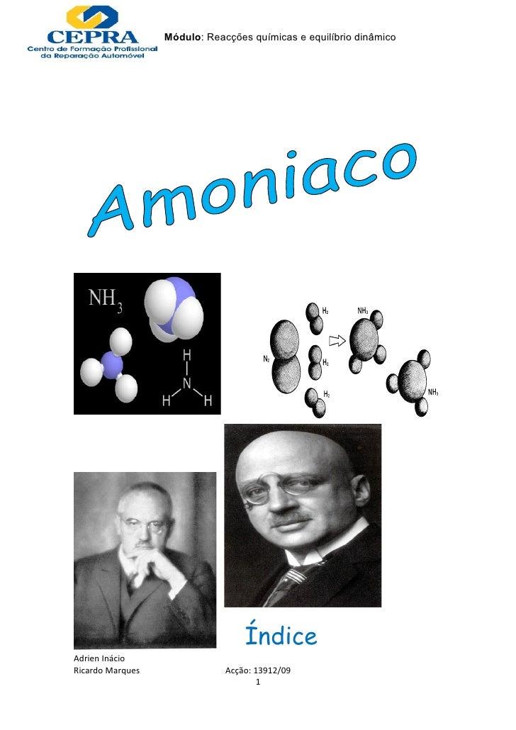 Módulo: Reacções químicas e equilíbrio dinâmico                                       Índice Adrien Inácio Ricardo Marques...