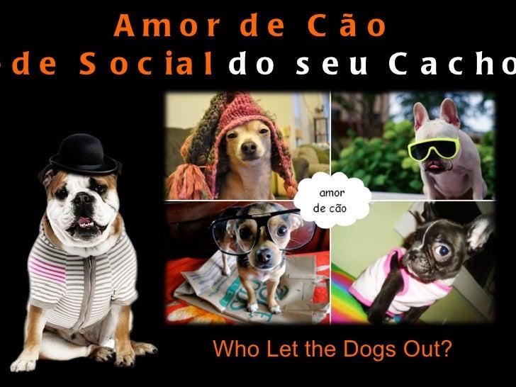 Who Let the Dogs Out? Amor de Cão A  Rede Social  do seu Cachorro