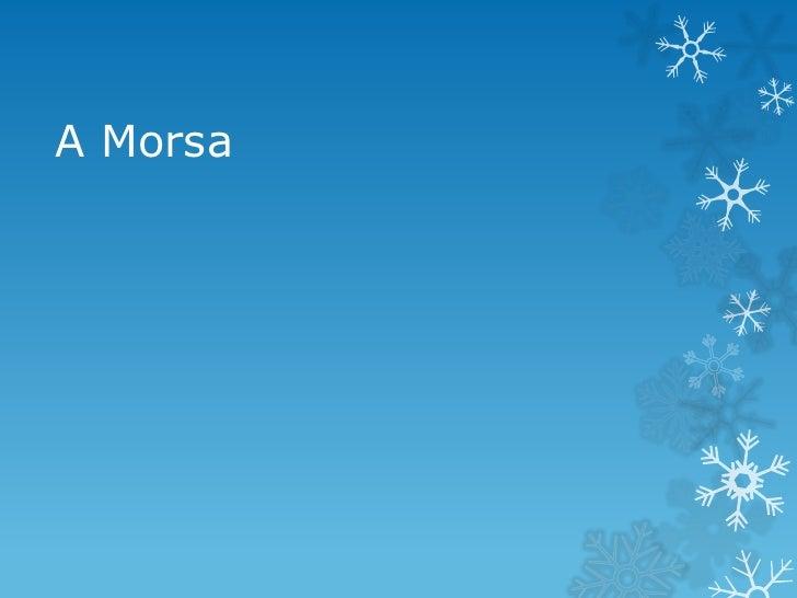 A Morsa