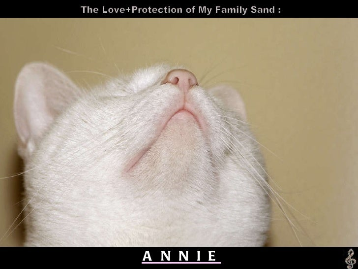 A  N  N  I  E The Love+Protection of My Family Sand :