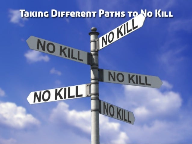 Taking Different Paths to No Kill