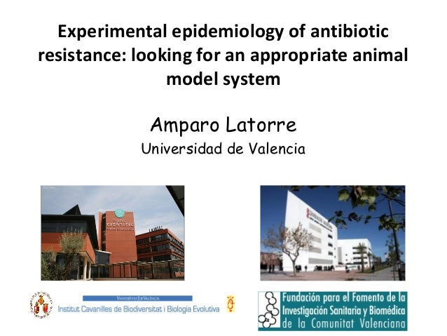 Experimental epidemiology of antibiotic resistance: looking for an appropriate animal model system Amparo Latorre Universi...