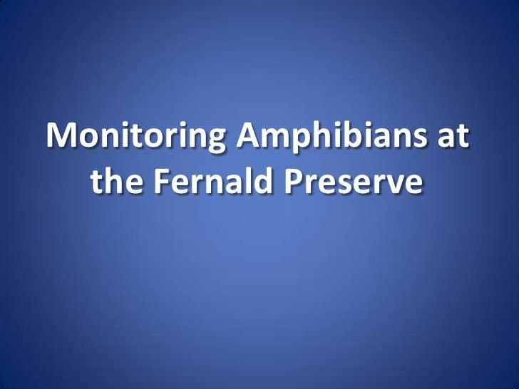 Monitoring Amphibians at <br />the Fernald Preserve<br />