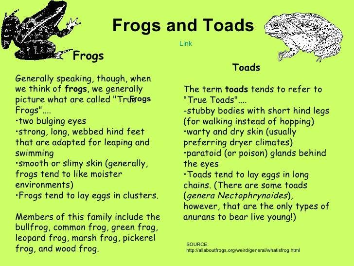 Amphibians Toads Amphibians Notes on Cl...