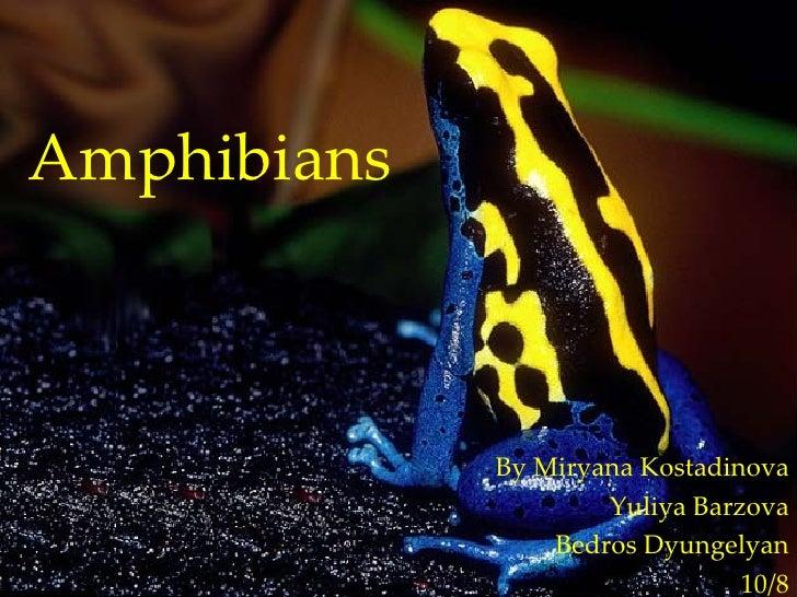 Amphibians By Miryana Kostadinova Yuliya Barzova Bedros Dyungelyan 10/8