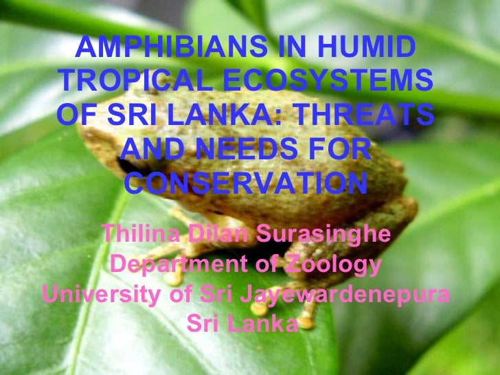 AMPHIBIANS IN HUMID TROPICAL ECOSYSTEMS OF SRI LANKA: THREATS AND NEEDS FOR CONSERVATION Thilina Dilan Surasinghe Departme...