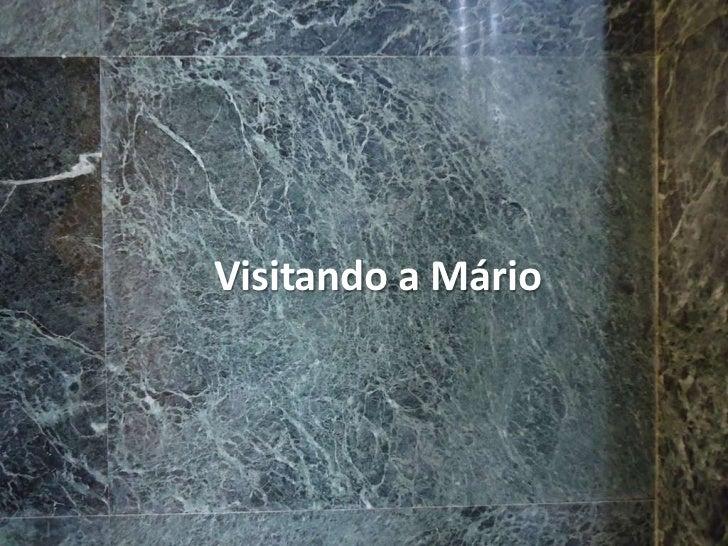 Visitando a Mário<br />