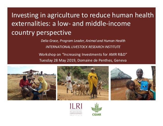 Investing in agriculture to reduce human health externalities: a low- and middle-income country perspective Delia Grace, P...