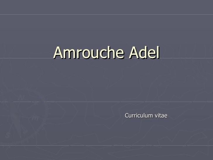 Amrouche Adel Curriculum vitae