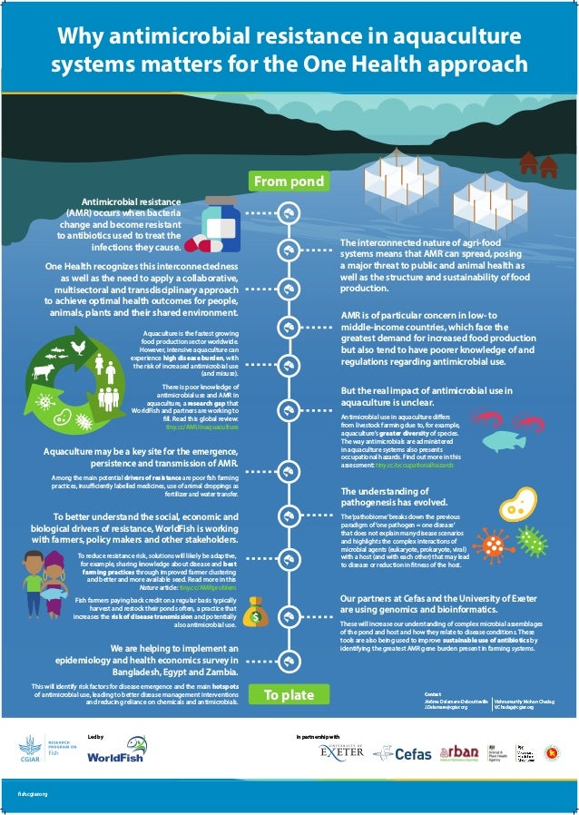 Why antimicrobial resistance in aquaculture systems matters for the One Health approach fish.cgiar.org Led by Aquaculture ...