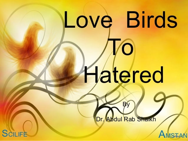 Love Birds              To            Hatered                    By            Dr. Abdul Rab ShaikhSCILIFE                ...