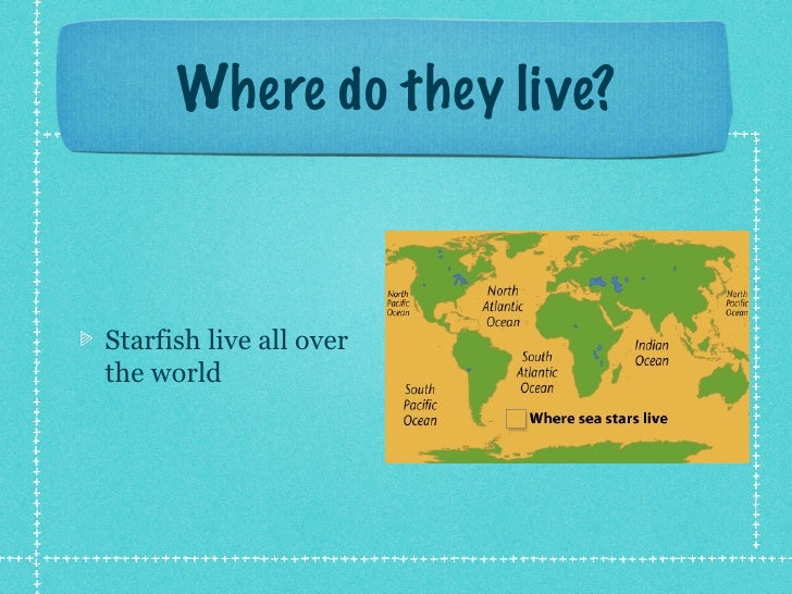 Where do they live?Starfish live all overthe world