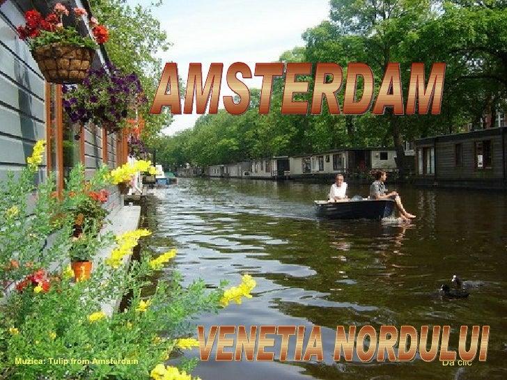 AMSTERDAM Muzica: Tulip from Amsterdam D ă clic VENETIA NORDULUI