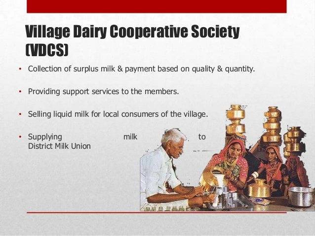 cooperative societies amul Dairy cooperatives district cooperative unions engaged  such as the number of primary societies covered and quantity of milk procured  amul dairy , anand soc.